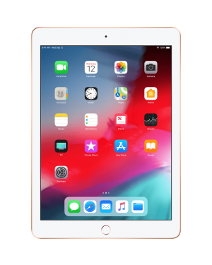 Apple iPad (6th Generation, Wi-Fi) A1893 128Gb Gold Wifi Grade B